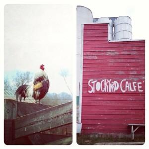 Stockyard-Cafe-39