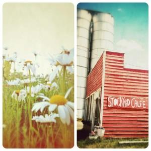Stockyard-Cafe-48
